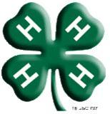 4-H clover 3-D
