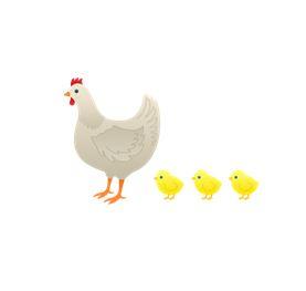 ChickenAndChicks