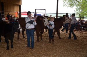 Cover photo for 2018 Central Piedmont Jr. Livestock Show Coming Up April 18-19