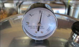 Cover photo for Free Pressure Canner Dial Gauge Testing / Inspection