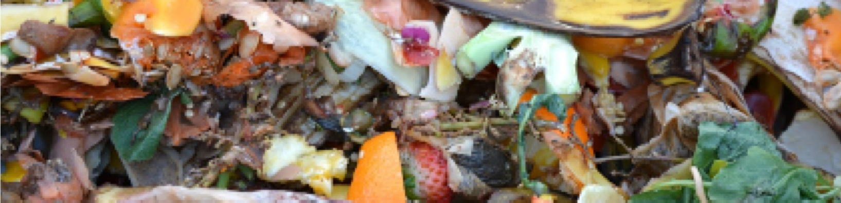 Image of compost
